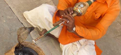 Avoiding Food Poisoning In India